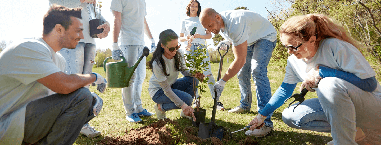 A group of employees planting a small tree to promote sustainability in the world, a great CSR effort