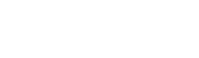 The Stamford Group Logo - White